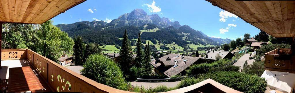 View From Chalet Karin